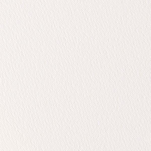 CLASSIQUE FEUILLE 56 X 76 300 G GRAIN FIN BLANC NATUREL